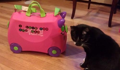 kid's suitcase
