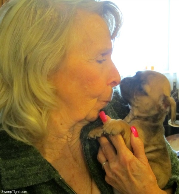 gram and bugg puppy