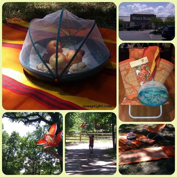 World Market beach picnic summer accessories