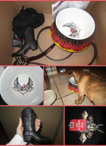 bret michaels pets rock
