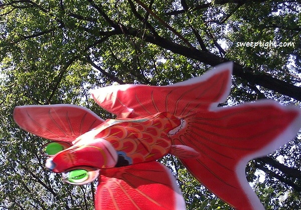 World Market Fish Kite