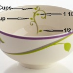 Precise Portions Dinnerware Portion Control Dishes Review
