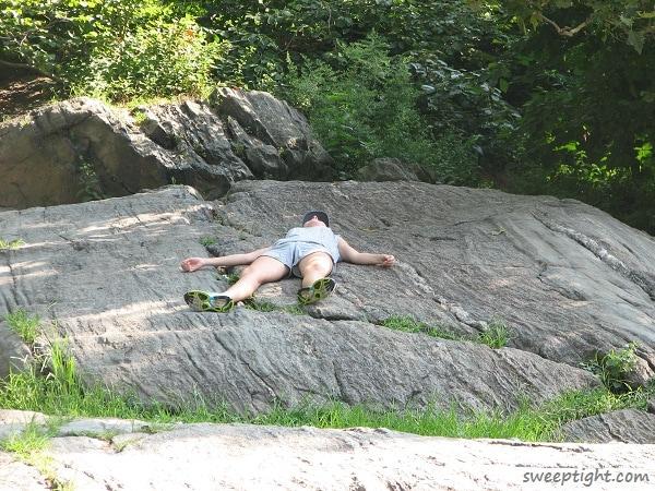 Central Park Iguana-like behavior