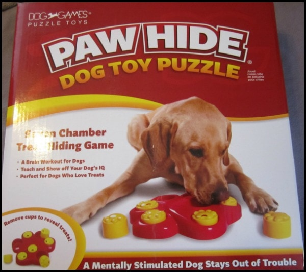 dog puzzle for puppies
