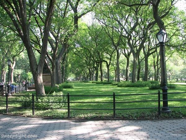 Pretty Cental Park Path