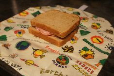Green Choice for Sandwich Bags