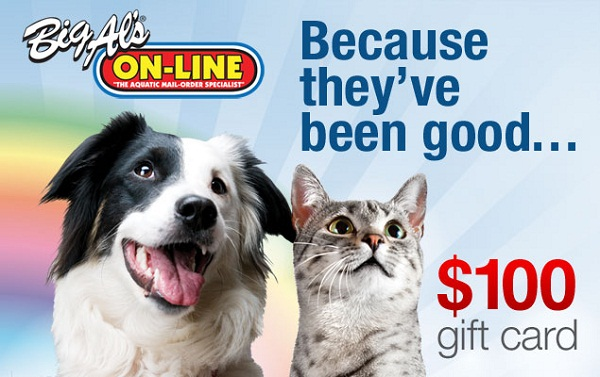 Big Al's Giftcard Giveaway for your pets