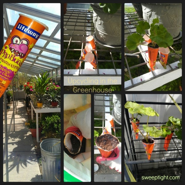 Upcycling DIY Craft Ideas for the greenhouse