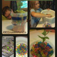 fun things for kids to do to prevent summer brain drain #MSIsummerbrain