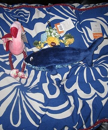 Tommy Bahama Toys at PetSmart