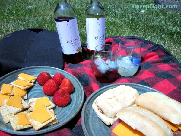 summer picnic with wine over ice
