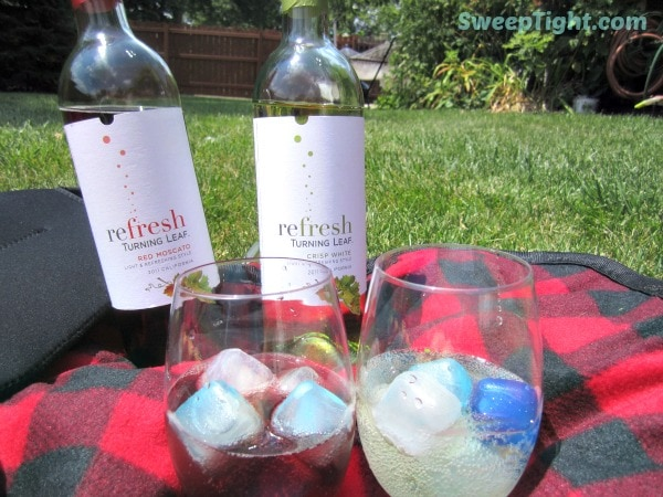 wine bottles and wine over ice on a picnic blanket