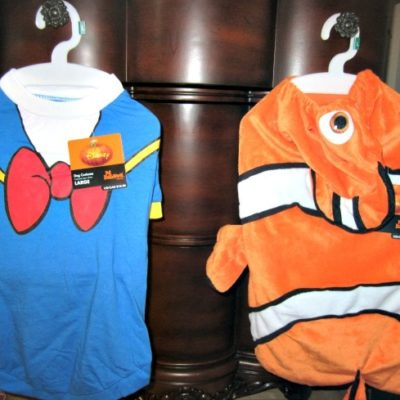 Halloween Pet Costumes and Toys