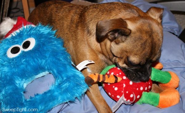 Holiday Dog Toys
