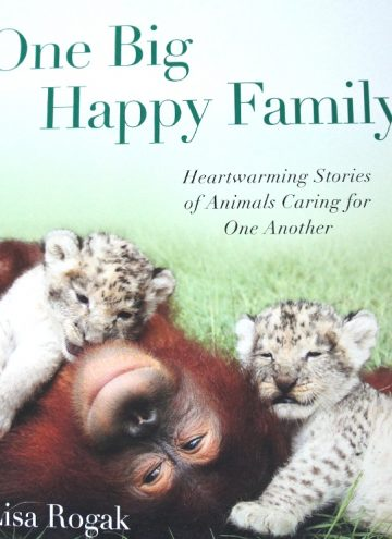 Cute Animal Photo Book Celebrating Family