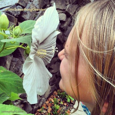 The Joy and Benefits of a Family Garden