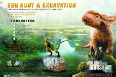 walkingwithdinosaurs_toolkit_eggexcavation