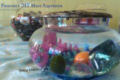 DIY Mini Aquarium – Activities for Kids