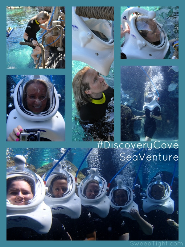 Walk around underwater SeaVenture at #DiscoveryCove Orlando #RockYourVacation