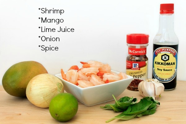 Spicy Mango Shrimp Ingredients | Sweep Tight Blog