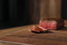 Outback Family Moments and 10% off Coupon
