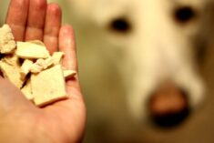 Natural Dog Food Made in the USA #FarmToBowl #PawNatural