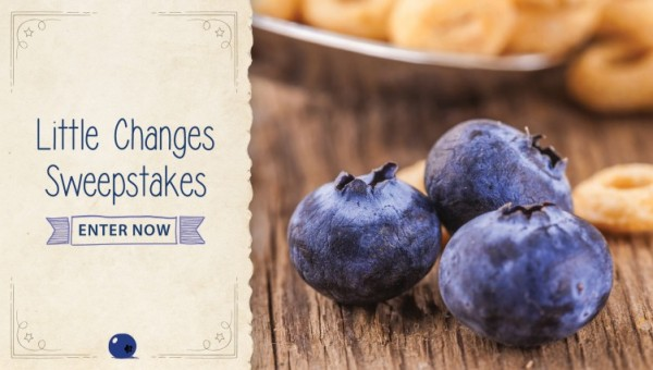 Sweepstakes #LittleChanges for the New Year
