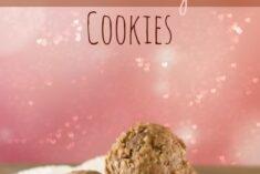 Oatmeal Pudding Cookies Recipe
