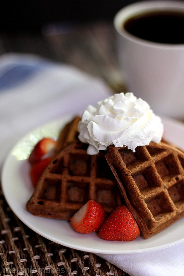 Chocolate Yogurt Waffles