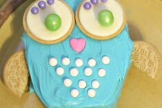DIY Owl Cake #CakeMyDay Sweetworks Prize Package