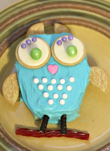 DIY Owl Cake with Sweetworks Candy