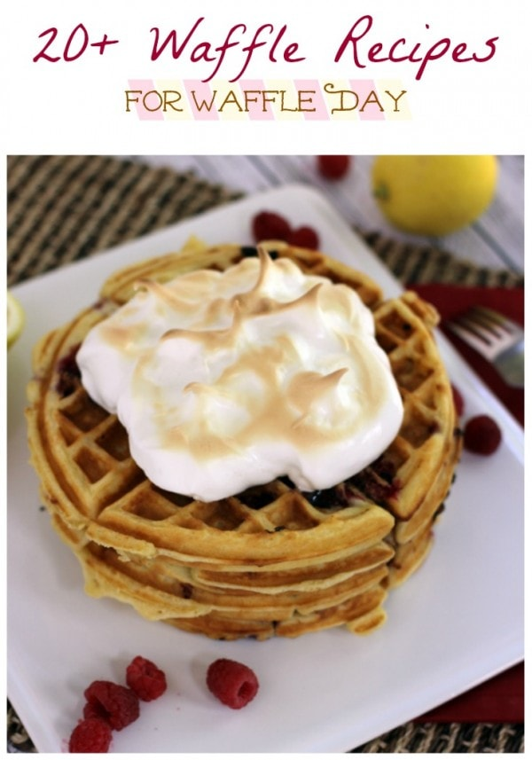 Over 20 Waffle Recipes for Waffle Day