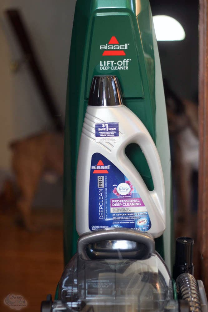 Spring Cleaning with BISSELL