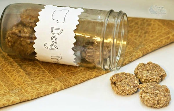Oatmeal Banana Homemade Dog Treats Recipe