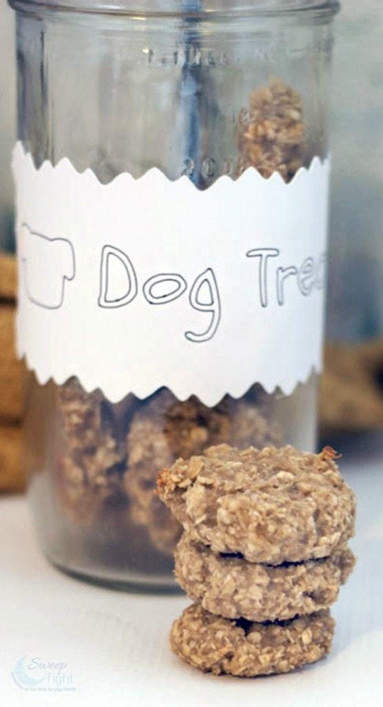 Oatmeal Banana Homemade Dog Treats Recipe