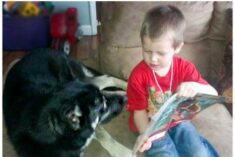 Encourage kids to Read to Pets