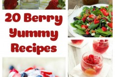 20+ Berry Yummy Recipes – Berry Recipe Round-Up