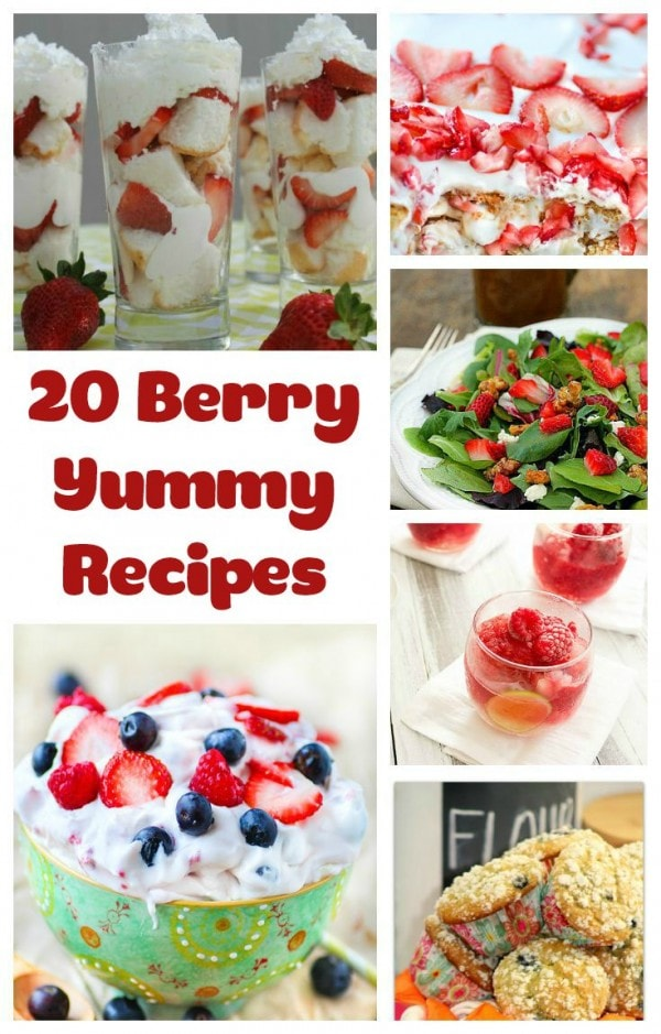 20 Berry Yummy Recipes - Berry Recipe Round-Up