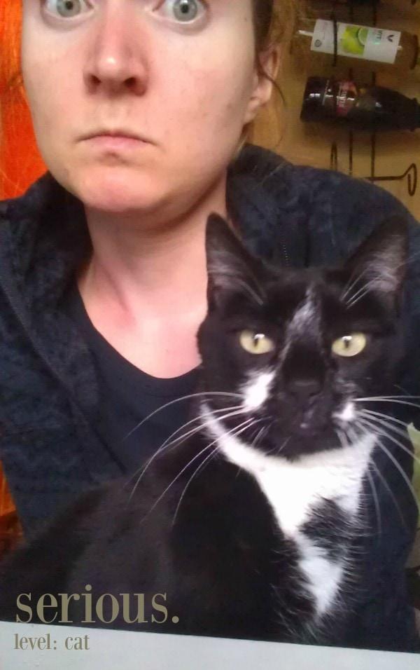 Serious level: cat