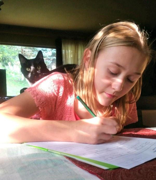 funny cat tutor