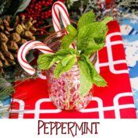Ginger Beer Cocktails - Peppermint Ginger Sparkle Recipe