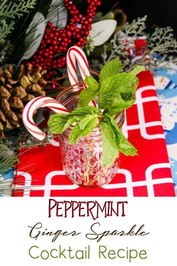 Ginger Beer Cocktails - Peppermint Ginger Sparkle Recipe