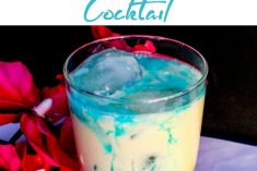 Blue Mixed Drink Recipe - Blue Snowball