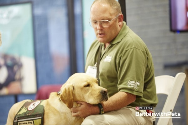 Veteran Service Dogs - 5 Things to Know