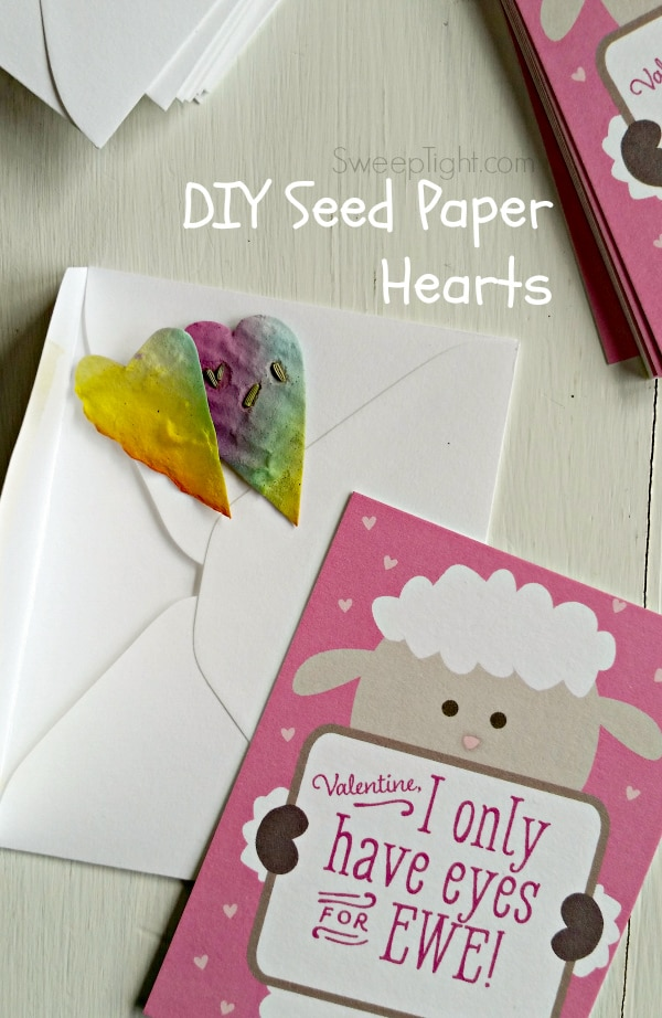 heart seed paper with a Valentine's day card