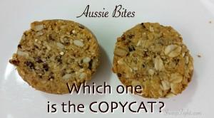 Aussie Bites Copycat Recipe - the best high energy snacks!