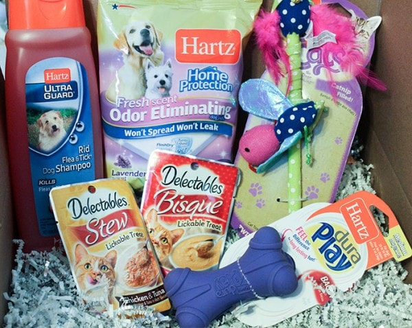 Pet Care Package - Loving Surprise for Pets and Their Humans