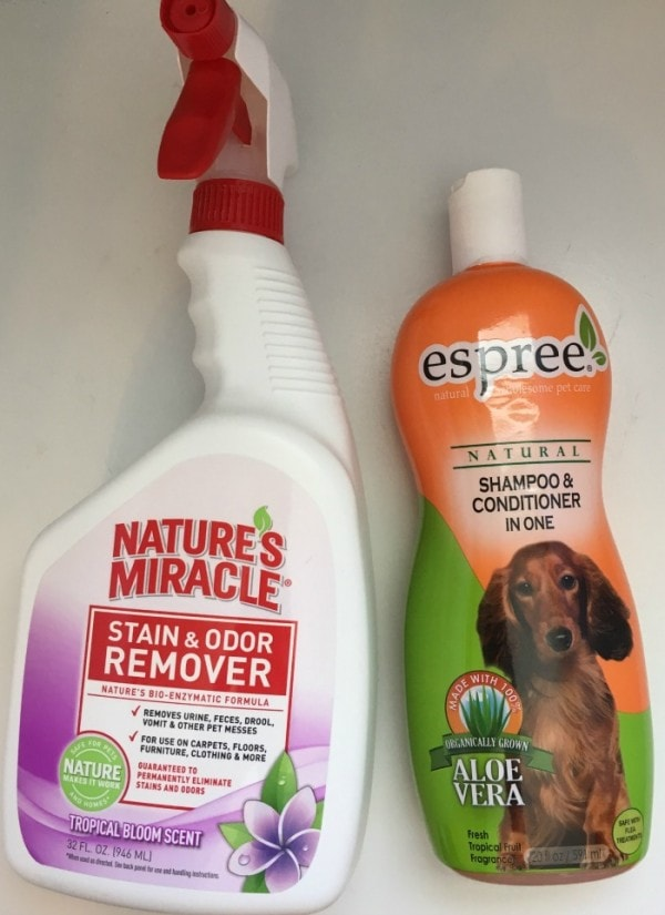 Pet Spring Cleaning Tips for Our Lovable Dirty Dogs