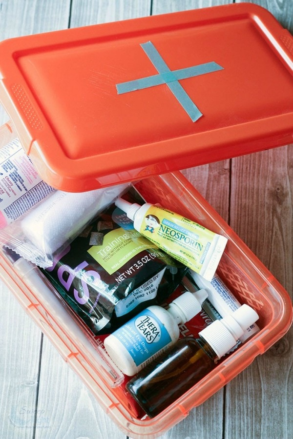DIY Dog First Aid Kits - A Must for Adventurous Pets