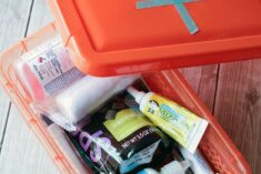 DIY Dog First Aid Kits for Adventurous Pets